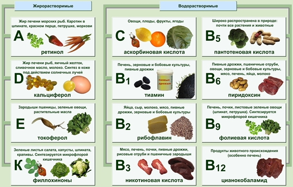 vitaminy_dlya_nabora_massy