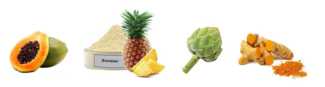Какими растительными средствами лучше лечить желудок